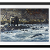 Along The Yellowstone - Grizzly   Rectangle print with mat