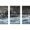 Along The Yellowstone - Grizzly   3-Piece Rectangle Canvas