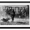 Cowboys Branding Cattle | Rectangle print with mat