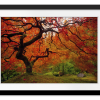 Tree Fire | Rectangle print with mat