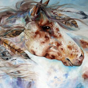 Thunder Appaloosa Indian War Horse