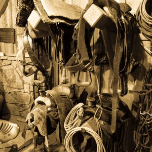 Horse Tack Room on Centennial Ranch