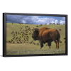 The Stampede | Single Rectangle Canvas