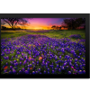 Rectangle Print | Bluebonnets At Dusk II