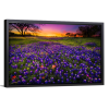 Single Rectangle Canvas | Bluebonnets At Dusk II
