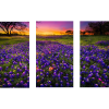 3-Piece Rectangle Canvas | Bluebonnets At Dusk II