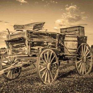 Rustic Carriage