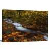 Creekside Colors | 1.5 inch gallery wrap
