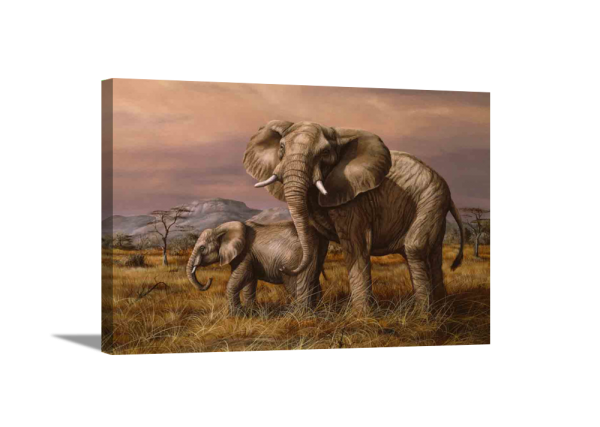 Mother and Child (Elephants) Canvas