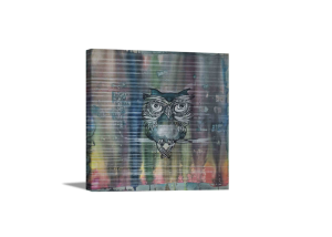 Owl In The Matrix Of Aura Canvas